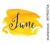 june month lettering... | Shutterstock .eps vector #497903716