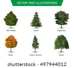 different tree sorts with names.... | Shutterstock .eps vector #497944012