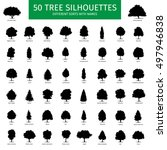 fifty different tree sorts with ... | Shutterstock .eps vector #497946838
