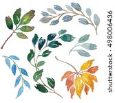 watercolor leaves and branches... | Shutterstock . vector #498006436
