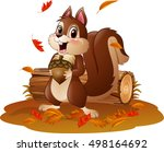 cartoon funny squirrel holding... | Shutterstock . vector #498164692