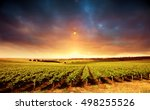 Vineyard Sunset In South...