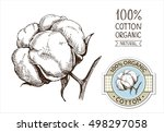 cotton set with sticker in... | Shutterstock .eps vector #498297058