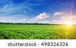 beautiful sunrise on green... | Shutterstock . vector #498326326