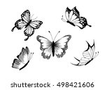 Set Of Butterfly. Vector Image...