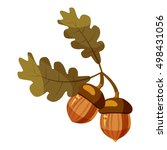 acorn icon. cartoon... | Shutterstock .eps vector #498431056