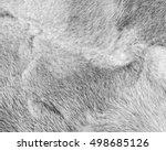Natural Light Gray Mink Fur...
