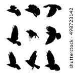 Flying Birds Silhouettes. Set...