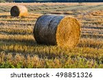 Small photo of sheaf harvest at sunset, alimentation, food and growth concept