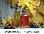 autumn tincture juice  | Shutterstock . vector #498913006