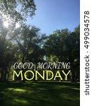 good morning  words on grass... | Shutterstock . vector #499034578