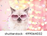 Stock photo beautiful cat in pink heart shaped sunglasses on festive background 499064032