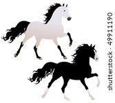 vector beautiful running black... | Shutterstock .eps vector #49911190