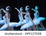 Ballet Swan Lake. Statement....