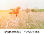 vintage bicycle on beautiful... | Shutterstock . vector #499204456