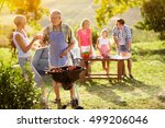 smiling grandparents drink wine ... | Shutterstock . vector #499206046