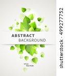 vector fresh green leaves... | Shutterstock .eps vector #499277752