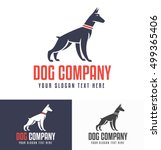 Stock vector logo design for dog walking training or dog related business with the doberman silhouette in the 499365406