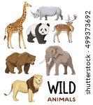wild animals set | Shutterstock .eps vector #499373692