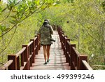 eco tourism at wetlands the... | Shutterstock . vector #499399246