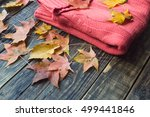 warm knitted sweater and autumn ... | Shutterstock . vector #499441846