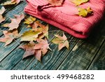 warm knitted sweater and autumn ... | Shutterstock . vector #499468282