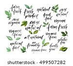 collection of hand drawn... | Shutterstock .eps vector #499507282