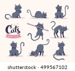 Stock vector vector collection of illustration of cute gray cat in various poses and text with cat paw prints on 499567102
