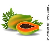 whole papaya with slice  and... | Shutterstock .eps vector #499768852
