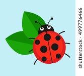 ladybug on leaf vector... | Shutterstock .eps vector #499776466