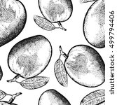 hand drawn mango fruit with... | Shutterstock .eps vector #499794406