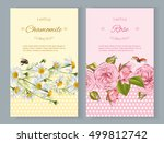 vector natural cosmetics... | Shutterstock .eps vector #499812742