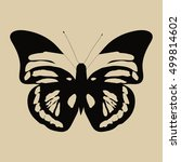 butterfly vector hand drawn.... | Shutterstock .eps vector #499814602