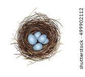 nest with eggs | Shutterstock .eps vector #499902112