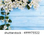 on wooden background  frame or... | Shutterstock . vector #499975522