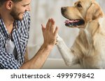 Stock photo high five with dog and human 499979842