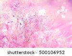 grass field summer .pink tone ... | Shutterstock . vector #500106952