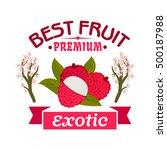 exotic lychee fruit emblem of...   Shutterstock .eps vector #500187988
