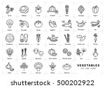 vegetables icon isolated ... | Shutterstock .eps vector #500202922