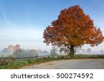 Rural Autumn Landscape With...