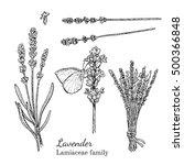 Ink Lavender Herbal...
