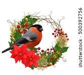 The Bright Red Bird Bullfinch...
