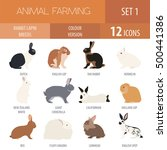 rabbit  lapin breed icon set.... | Shutterstock .eps vector #500441386