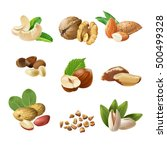 set vector icons of nuts | Shutterstock .eps vector #500499328