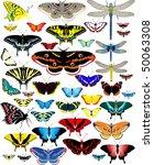vector set of butterflies and...   Shutterstock .eps vector #50063308