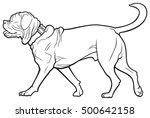 bordeaux dog vector... | Shutterstock .eps vector #500642158