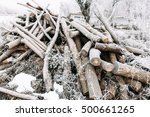 Bunch Of Frosty Firewood In...