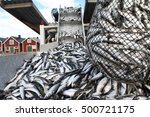 Caught Fishes In The Net At...