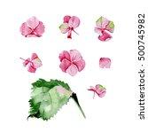 pink watercolor hydrangea... | Shutterstock . vector #500745982