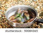 Cooking New Zealand green-lipped mussels on a beach - stock photo
